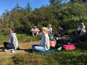 mindfulness_i_naturen_2016